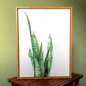 Wall Fashion Succulent Canvas Print